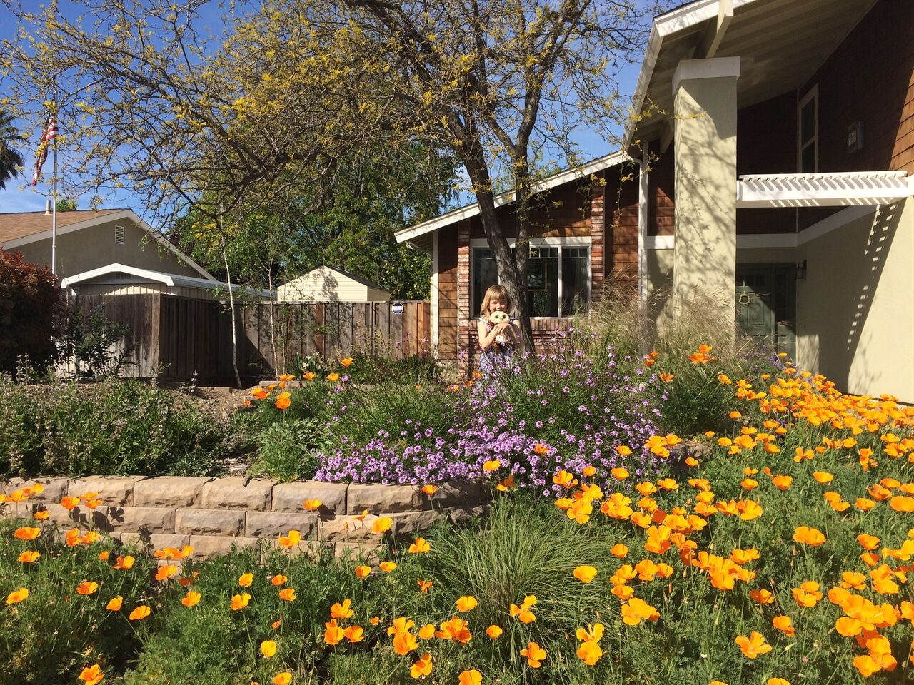 Heather and Ryan Day\'s garden – #26 « Bringing Back the Natives ...